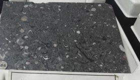 珍珠和灰色大理石水成岩 免版税库存照片