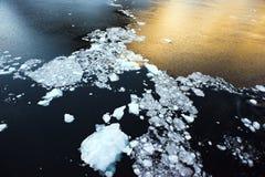 珍珠在海的表面离开,南极 免版税库存图片
