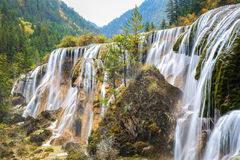 珍珠在jiuzhai谷国家公园,四川,中国使瀑布靠岸 免版税图库摄影