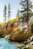 珍珠浅滩瀑布用在树中的透明的水 图库摄影