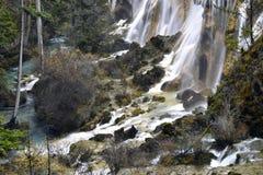 珍珠浅滩瀑布 免版税库存照片