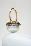 珍珠环形 免版税库存图片