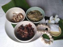 珍珠项链/草本健康的 免版税库存照片