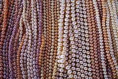 珍珠项链 库存图片