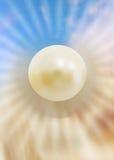 珍珠 免版税库存图片