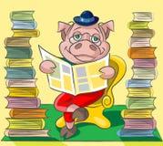珍藏书籍者-猪 免版税库存照片