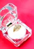 珠宝环形婚礼 免版税图库摄影