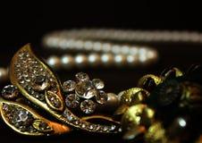 珠宝装饰美丽的ornation 库存照片