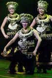 珠海韩Sheng艺术马戏团。 春节2013年。 都伯林 库存照片