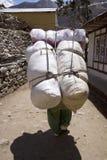 珠穆琅玛巨大的负荷np搬运程序 免版税库存照片