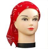 班丹纳花绸时装模特红色界面 免版税库存图片