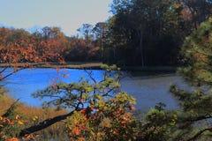 班奈特` s小河在11月 免版税库存照片