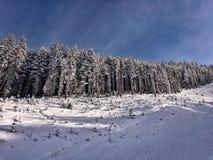班斯科滑雪胜地 库存图片