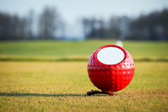 球五颜六色的高尔夫球标记 图库摄影