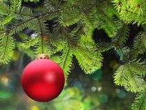 球分行圣诞节绿色云杉 免版税图库摄影