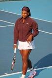 球员专业塞雷纳网球美国威廉斯 库存照片