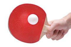 球员乒乓球 免版税库存照片