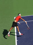 球员职业网球 免版税图库摄影