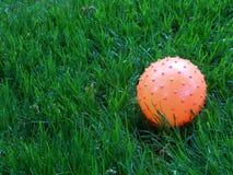 球和草 库存图片