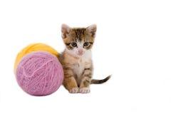 球小猫那些纱线 免版税库存照片