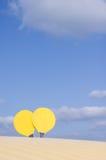 球拍黄色 免版税图库摄影