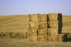 球日干草被摆正的被堆积的晴朗 库存照片