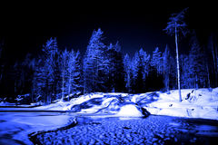 球森林冰湖月亮晚上冬天 免版税图库摄影