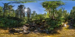 球状全景360 180小河在一个密集的绿色森林里 免版税库存图片