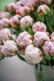 球芽 在玻璃花瓶的可爱的花 桃红色牡丹美丽的花束 花卉构成,场面,白天 免版税库存图片