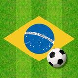 球草反映足球水 向量例证