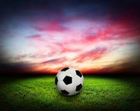 球草反映足球水 免版税库存图片