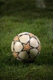 球草足球 图库摄影