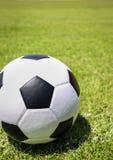 球草绿色足球 免版税库存图片