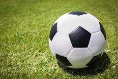 球草绿色足球 库存图片
