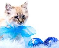 球蓝色装饰新年度 免版税库存照片