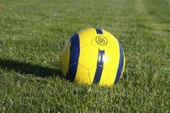 球足球 库存照片