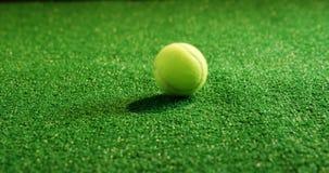 球重点草网球 影视素材