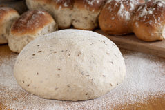 球面包小茴香面团拂去fl上升的w麦子&#30340 库存照片