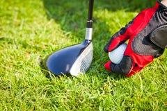 球高尔夫球安置 免版税图库摄影