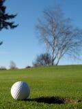 球高尔夫球绿色 库存图片