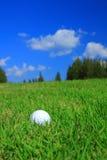 球高尔夫球草绿色 库存照片