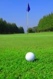 球高尔夫球草绿色 免版税库存照片