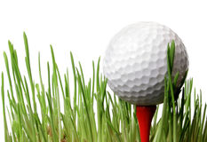 球高尔夫球草 图库摄影