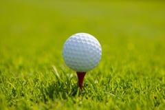 球高尔夫球起始时间 免版税库存图片
