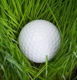 球高尔夫球铁发球区域 免版税库存照片