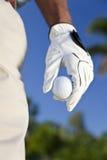 球高尔夫球高尔夫球运动员藏品 免版税库存照片