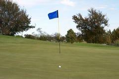 球高尔夫球绿色放置 免版税库存照片