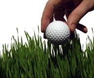 球高高尔夫球的草 免版税库存图片
