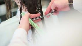 理发师裁减女孩的头发关闭 股票视频