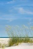 理想海滩的日 免版税库存图片